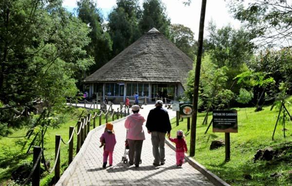 gramado zoo para toda a família